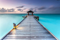 J E TT Y- Diffushi Island-Malediven von markusBUSCH FOTOGRAFIE