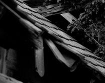 Sich schuppender Holzschuppen von ysanne