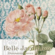 belle rose von art2b