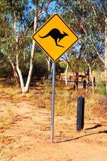 Kangaroo Sign by ann-foto