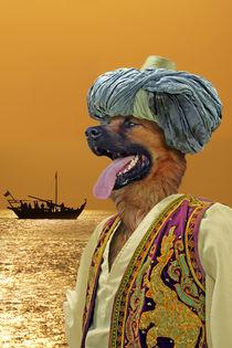 Sinddog der Seefahrer von ir-md