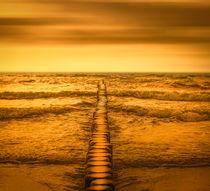 Gold beach von Ingo Menhard