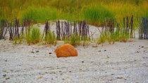 Orange stone von Heike Burmester
