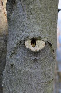 Ich sehe Dich by alana