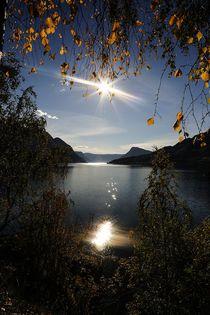 Blick auf den Sognefjord von Petra Arians