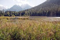 Berchtesgadener Land - Taubensee von Chris Berger