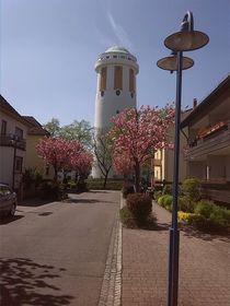Frühling von Jürgen Kosel