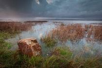 The Loughor estuary by Leighton Collins