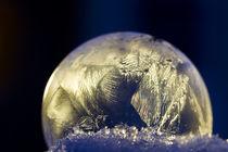 gefrorene Schönheit von lightart