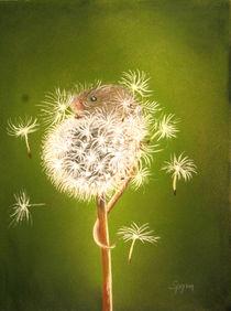 Kleine Maus by Thomas Spyra