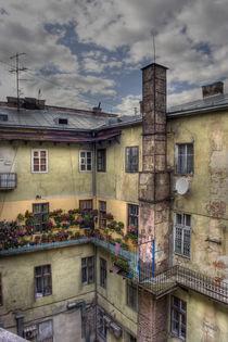 Garden by Lukyan Turetskyy