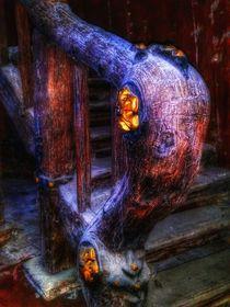 Glowing Decay von Susanne  Mauz