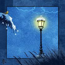 Winter, aus der Serie 4 Jahreszeiten by Monika Juengling