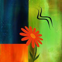 Blüte von Gabi Siebenhühner