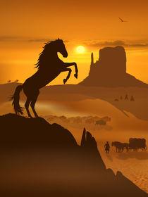 Freiheit für den schwarzen Mustang von Monika Juengling
