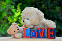 Teddybären  by Claudia Evans