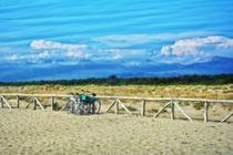 Strand - Räder von Claudia Evans