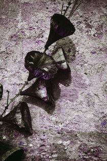 'Raitenhaslach - Hölzerne Winden am Wasserturm' von Chris Berger