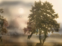 Erwecke den Tag by Alois Reiss