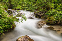 Mountain stream von Antonio Scarpi