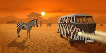Streifenbegegnung in Afrika von Monika Juengling