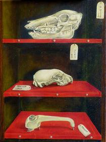 Stilleben mit Schattenseelen von Dana Bennewitz