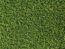 Artificial Green Grass Background von Radu Bercan