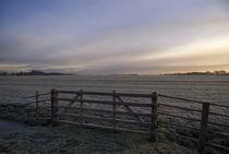 Frosted pasture near Wijngaarden von John Stuij