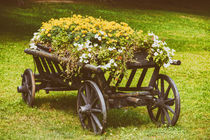 Flower Country Wagon On Green Grass von Radu Bercan
