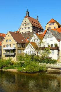 Das Ufer der Enz in Besigheim by gscheffbuch
