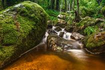 kleiner Wasserfall von Michael Wallisch