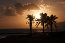 Sunset over a palm beach in southern Spain by Jessy Libik