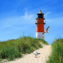 Der Leuchtturm neben dem Deich von Monika Juengling