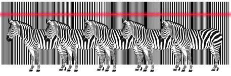 Zebra-barcode-laser-viele