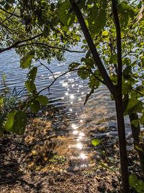 Die letzten Sonnenstrahlen by Nicole Bäcker