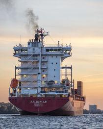 Aalderdijk - Container Ship von Steffen Klemz