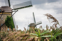 Windmills and reed von Erik Mugira