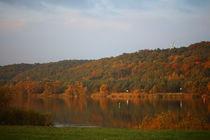Herbstspiegelung an der Elbe by Simone Marsig