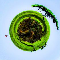 golf course with trees and blue sky in small planet style by timla
