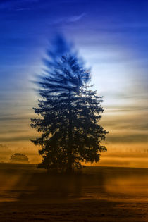 Autumn mood 971016 von Mario Fichtner