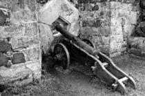 Kanone von Gabi Siebenhühner