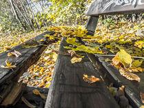 'Herbstlich pausieren' von Nicole Bäcker