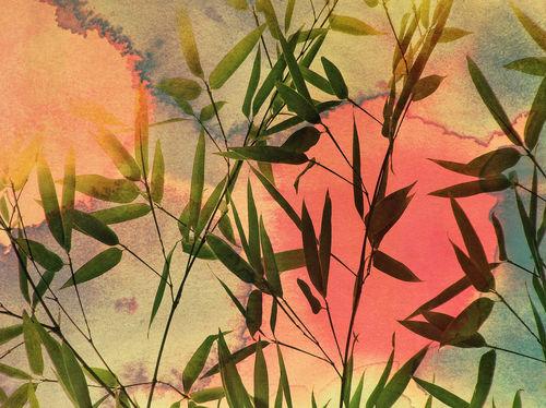 Bambus-bunt-aquarell