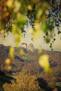 herbstlaub  -  fall(ing) leaves by augenwerk