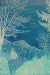 Blue-dreamscape