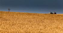 The Great Plains by Jay ZeroZero