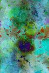 Color-burst-mp-kopie-faa