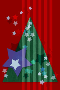 stars and stripes - christmas edition von augenwerk