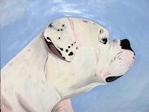 Bulldogge Maggy von roosalina