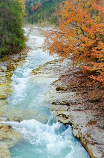 Herbstlicher Bergbach von Thomas Matzl
